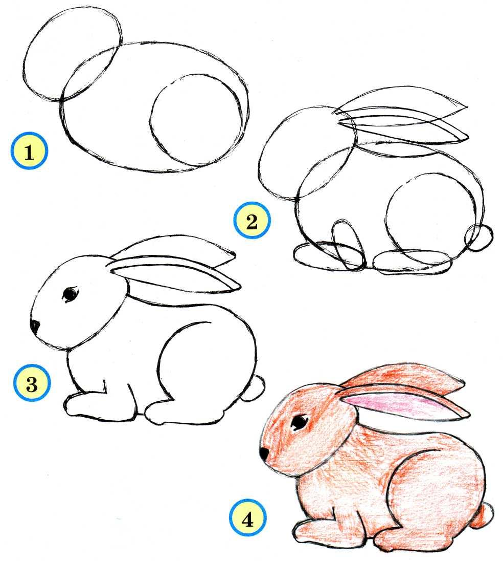 Конспект урока по изобразительному искусству рисуем живьтных