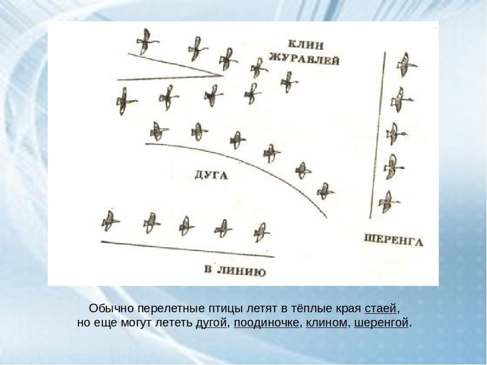 День кнб в казахстане картинки заранее просят