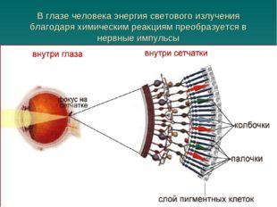 В глазе человека энергия светового излучения благодаря химическим реакциям пр