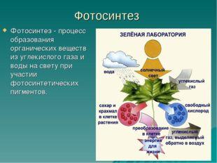 Фотосинтез Фотосинтез - процесс образования органических веществ из углекисло