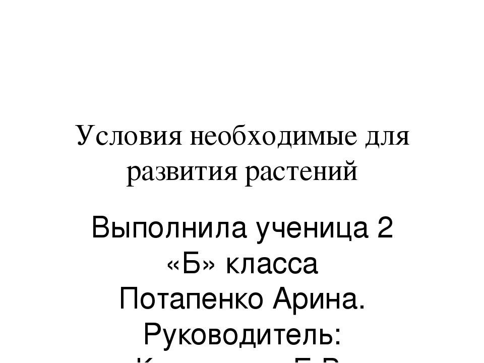 Условия необходимые для развития растений Выполнила ученица 2 «Б» класса Пота...
