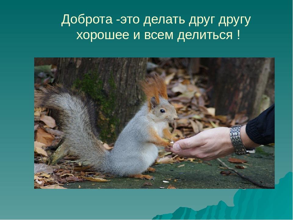 Доброта -это делать друг другу хорошее и всем делиться !