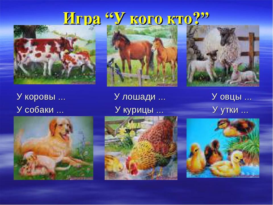 """Игра """"У кого кто?"""" У коровы ... У лошади ... У овцы ... У собаки ... У курицы..."""