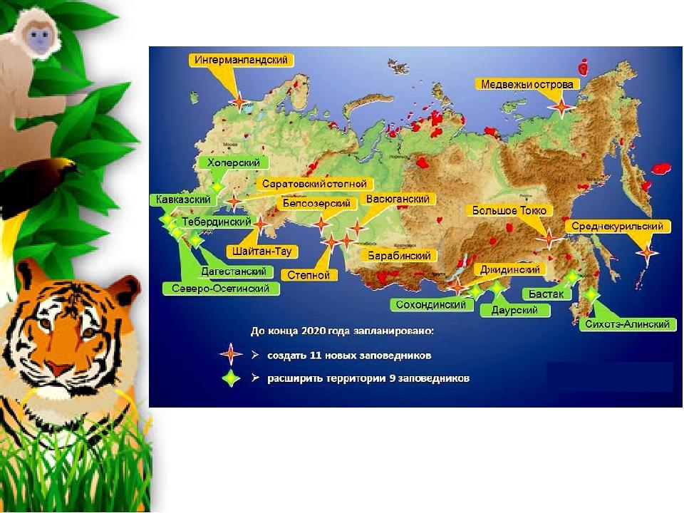Открытка с днем заповедников и национальных парков