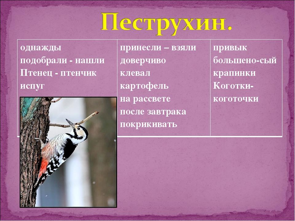 однажды подобрали - нашли Птенец - птенчик испуг принесли – взяли доверчиво...