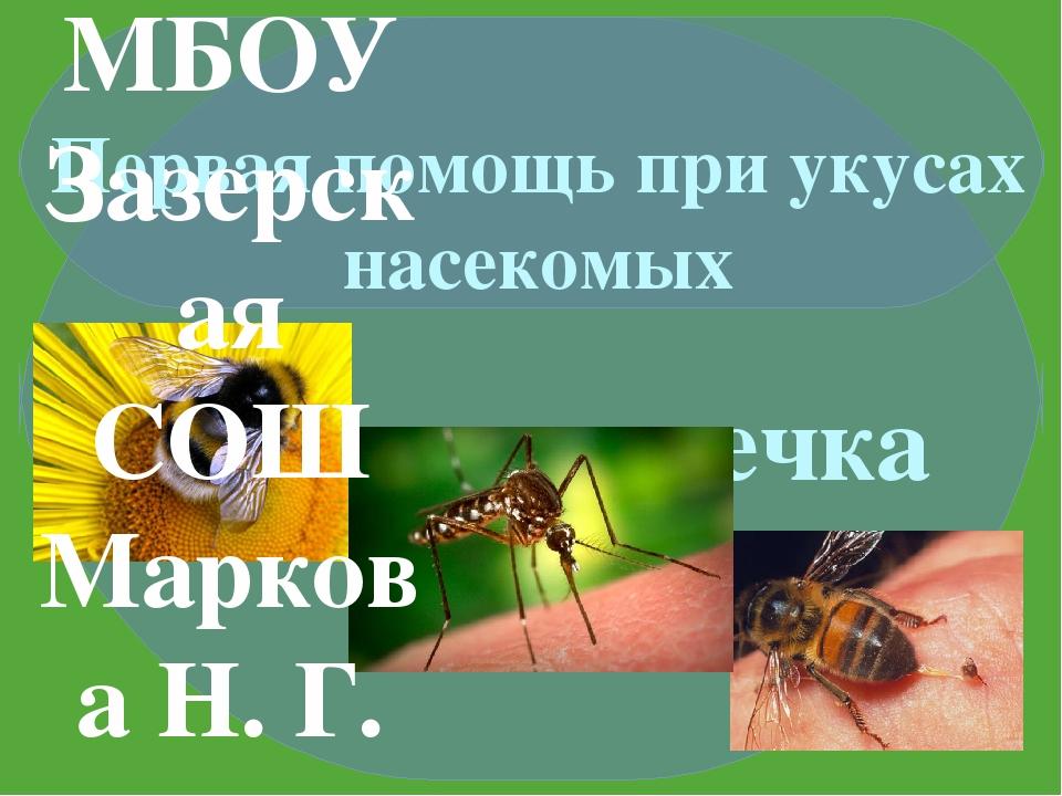 Зеленая аптечка Первая помощь при укусах насекомых Автор презентации: учител...