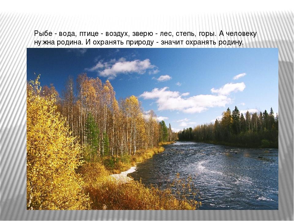 Рыбе - вода, птице - воздух, зверю - лес, степь, горы. А человеку нужна родин...