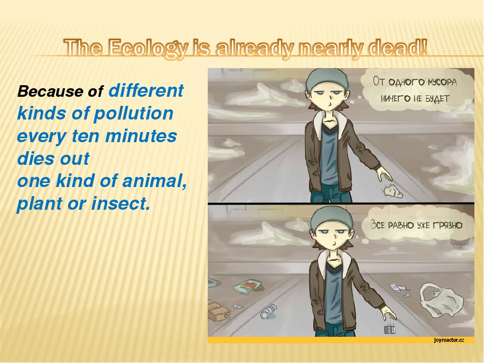 essay on different kinds of pollution So here we are providing you free essay on pollution in english download essay on there are different types of all these kinds of pollutions are.