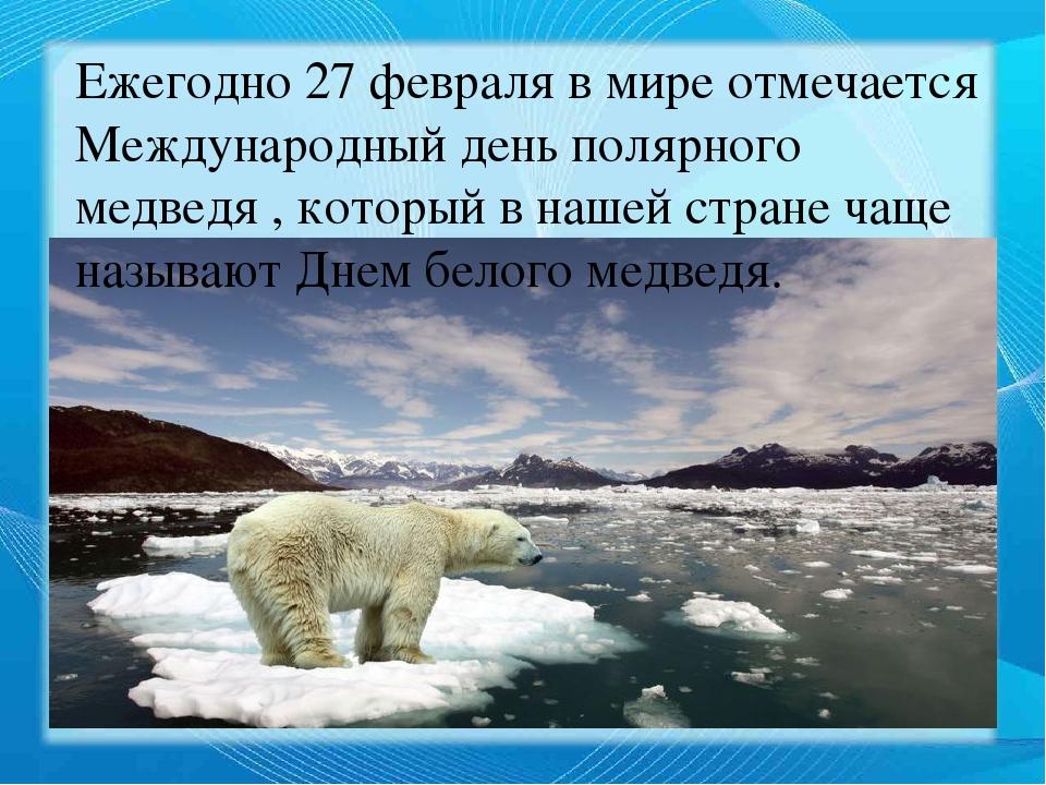 поздравление с днем полярного медведя картинки мне рассказывала, что