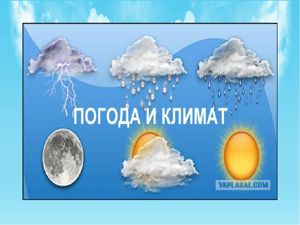 Доклад по географии климат и погода 7595
