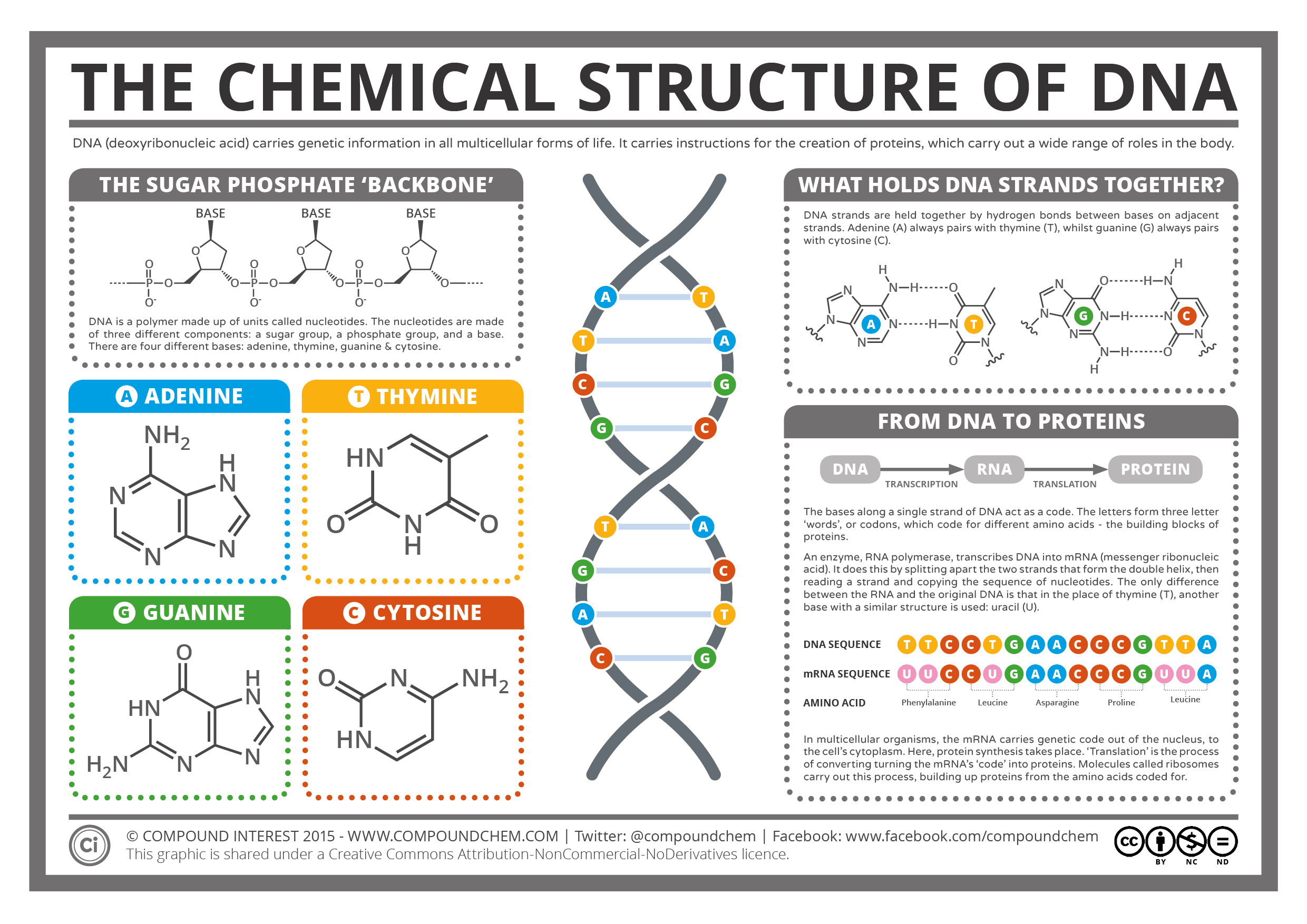 an analysis of the characteristics of dna deoxyribonucleic acid and the possibilities of dna technol The forensic dna laboratory utilizes methods to identify individuals by characteristics within their deoxyribonucleic acid (dna) dna is a blueprint for the genetic instructions that make-up a human being.