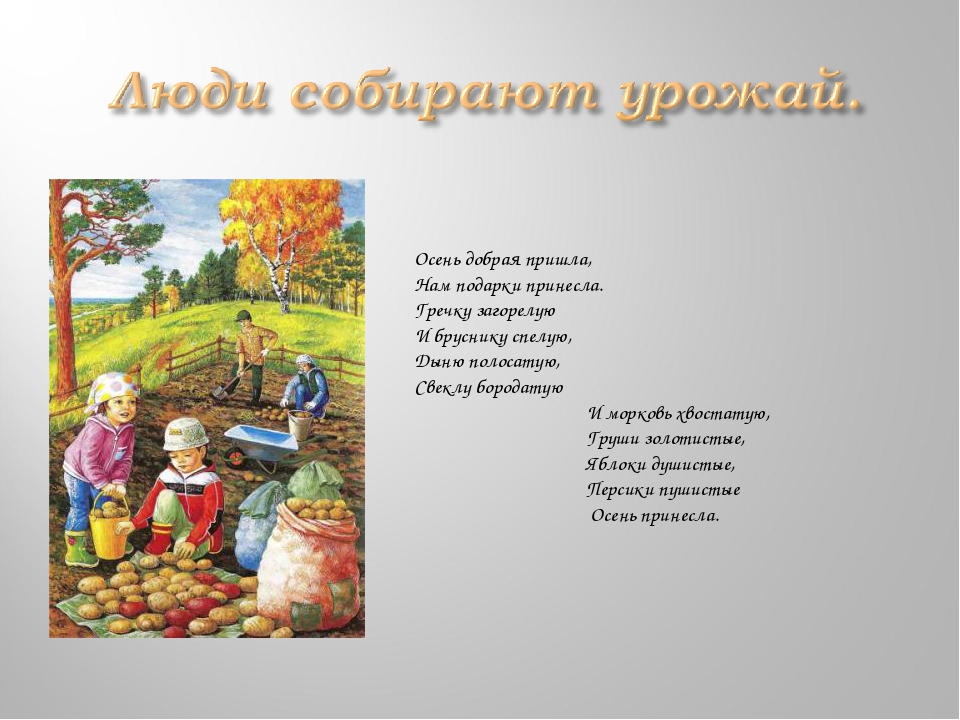стихи к празднику урожая папка
