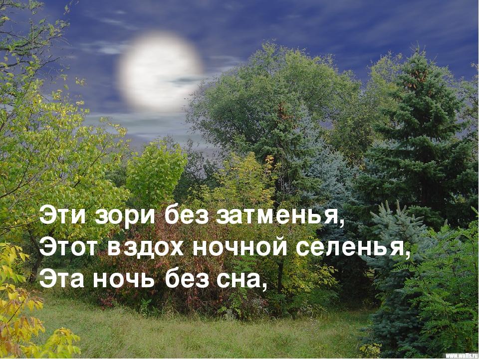 Эти зори без затменья, Этот вздох ночной селенья, Эта ночь без сна,