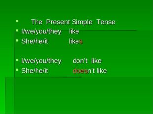 The Present Simple Tense I/we/you/they like She/he/it likes I/we/you/they do