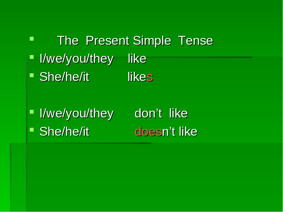 The Present Simple Tense I/we/you/they like She/he/it likes I/we/you/they do...