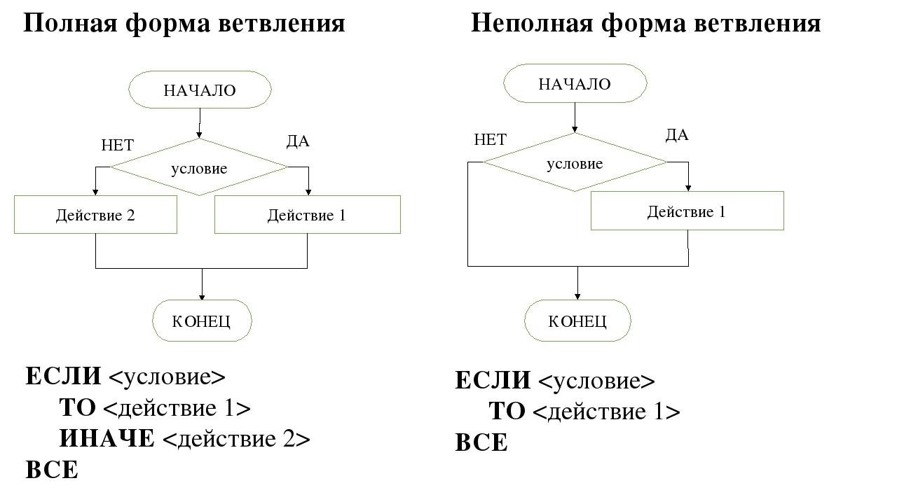 Алгоритмы ветвления блок схема алгоритмов ветвления фото 967
