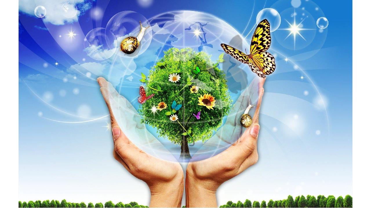 вся картинки на тему экологический мир настройках