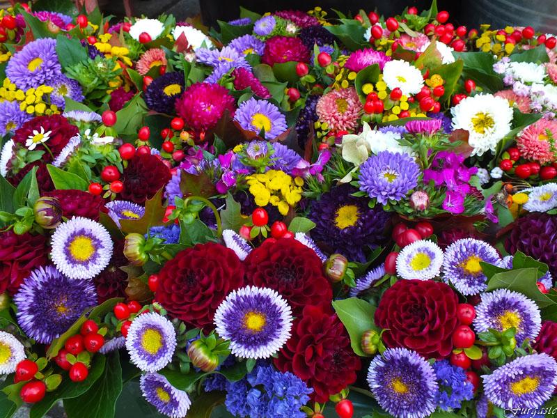 Мир цветов купить свежие цветы, купить букет, комнатные