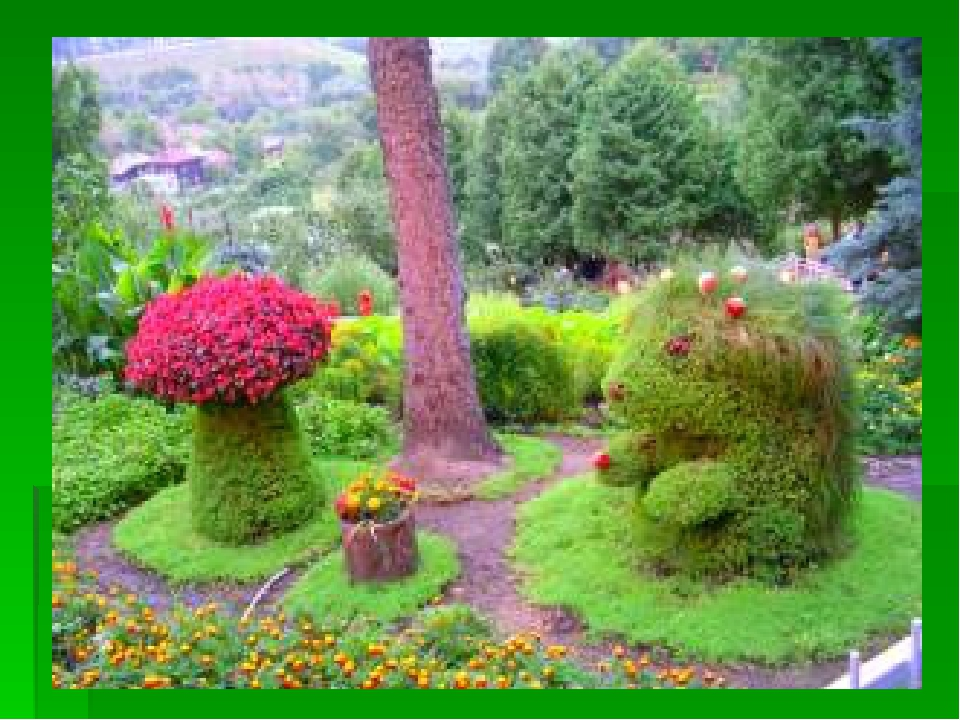 Топиарий для сада