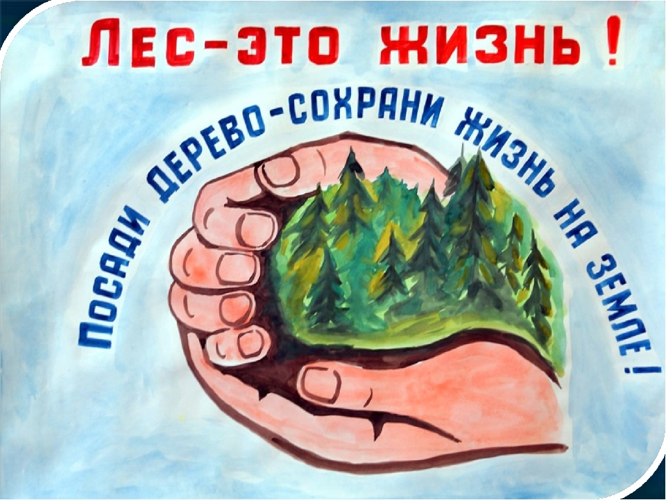 Картинки плакаты защиты природы