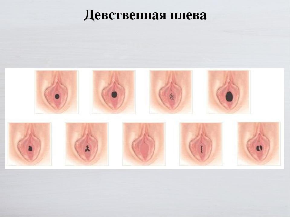 Половые Органы Девственниц Девушки