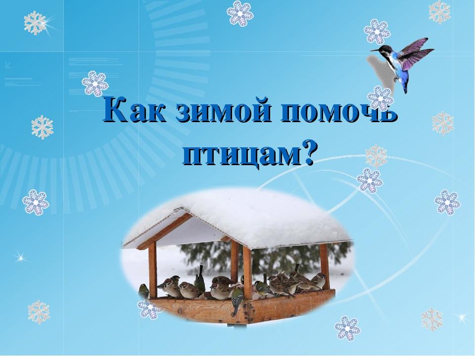 черед картинка как помочь птицам зимой возрасте семнадцати
