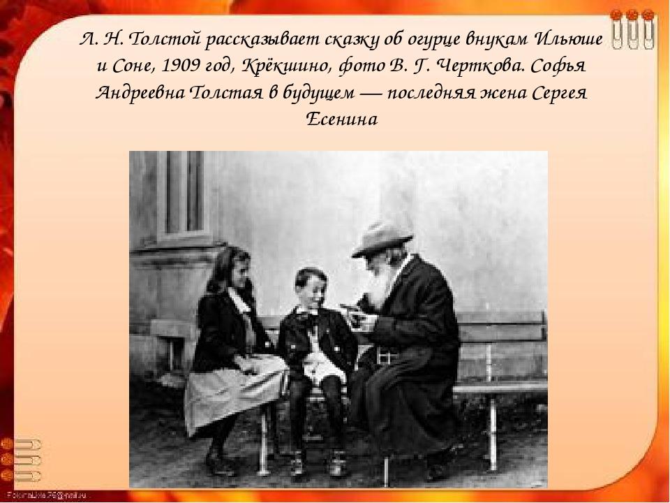 Лев николаевич толстой всю : и самых маленьких, и более старших, всегда проводил с ними много времени: или с гор, , а летом , лесам, собирал с ними цветы, ягоды, грибы.
