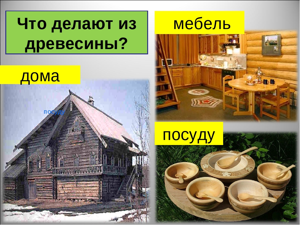 Что делают из древесины картинки для детей