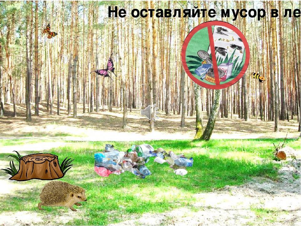Нельзя мусорить в лесу картинки для детей