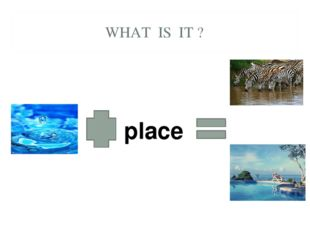 WHAT IS IT ? place