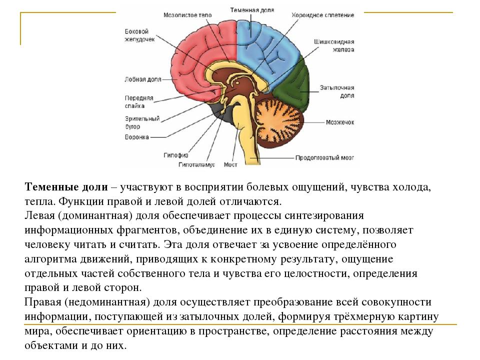 Умеренная дисфункция стволовых структур головного мозга