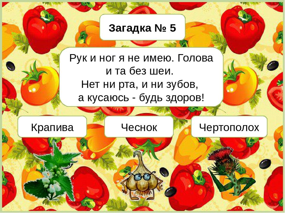 загадки с картинками еда зеркала при открывании