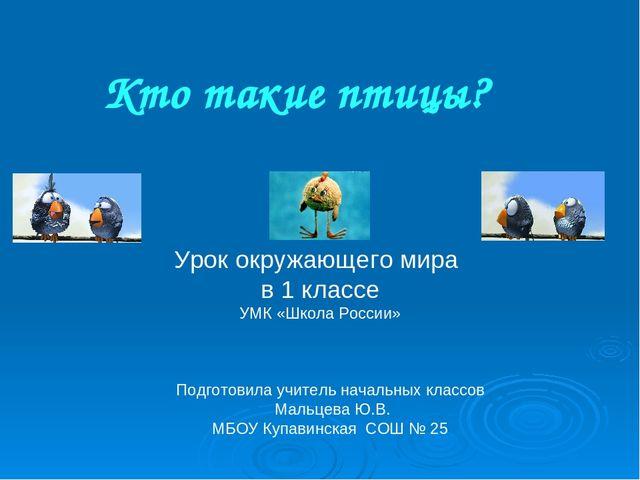 urok-prezentatsiya-o-ptitsam-1-klass-pleshakov