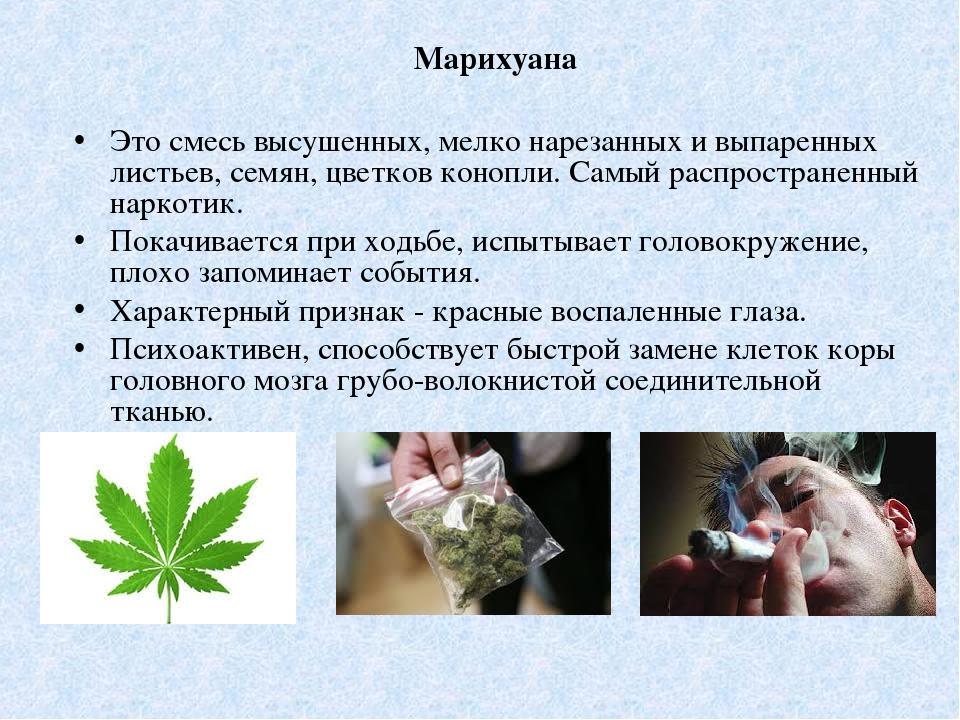 Наркотик конопли конопля вред из конопли рецепт кузьмич