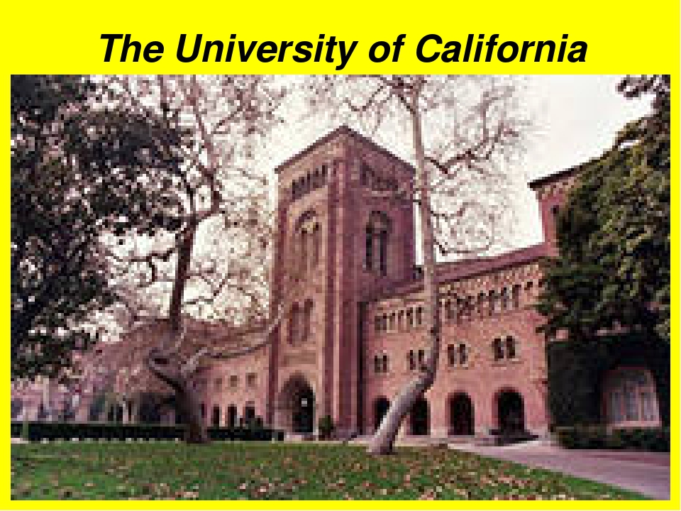 university of california college essays These new university of california essay prompts replace the personal statement with a set of eight questions, of which you need to answer four here's tips on how to address these new essay prompts.