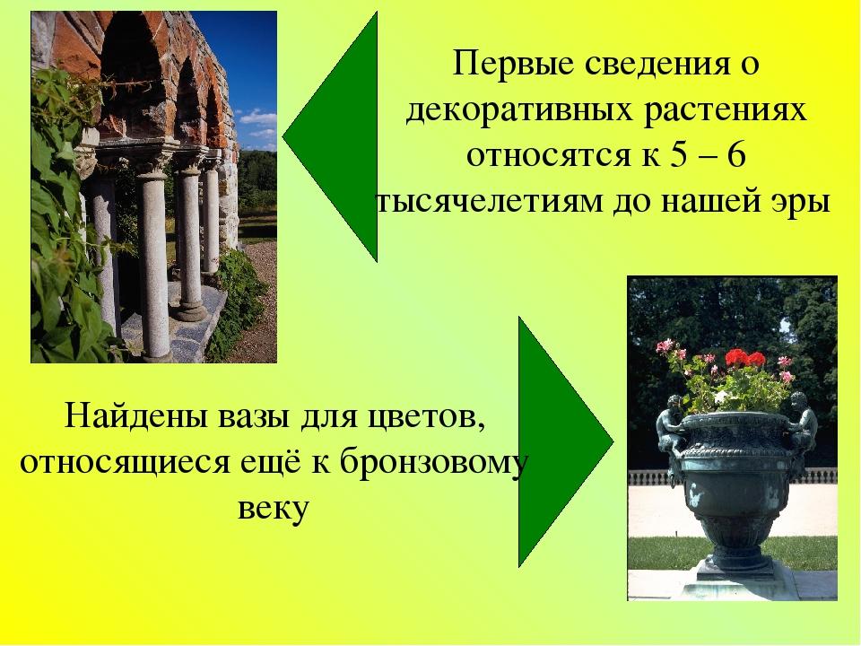 Первые сведения о декоративных растениях относятся к 5 – 6 тысячелетиям до на...
