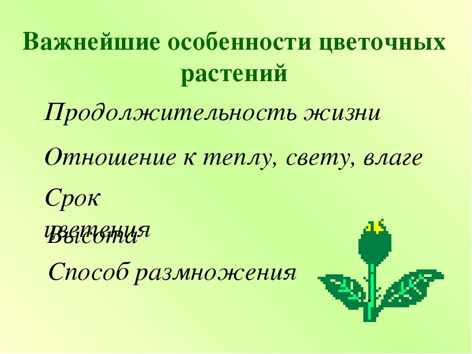 Важнейшие особенности цветочных растений Продолжительность жизни Отношение к...