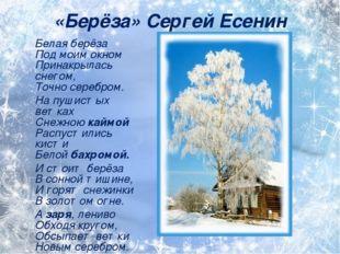 «Берёза» Сергей Есенин Белая берёза Под моим окном Принакрылась снегом, Точн