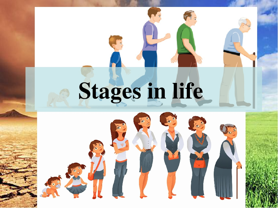 life stage A life stage (or just stage) is a period in your creature's life, whether they are a norn, grendel, ettin or geat their needs will change as their life stage changes some breeds, like the mernorns, gain or lose abilities as they age.