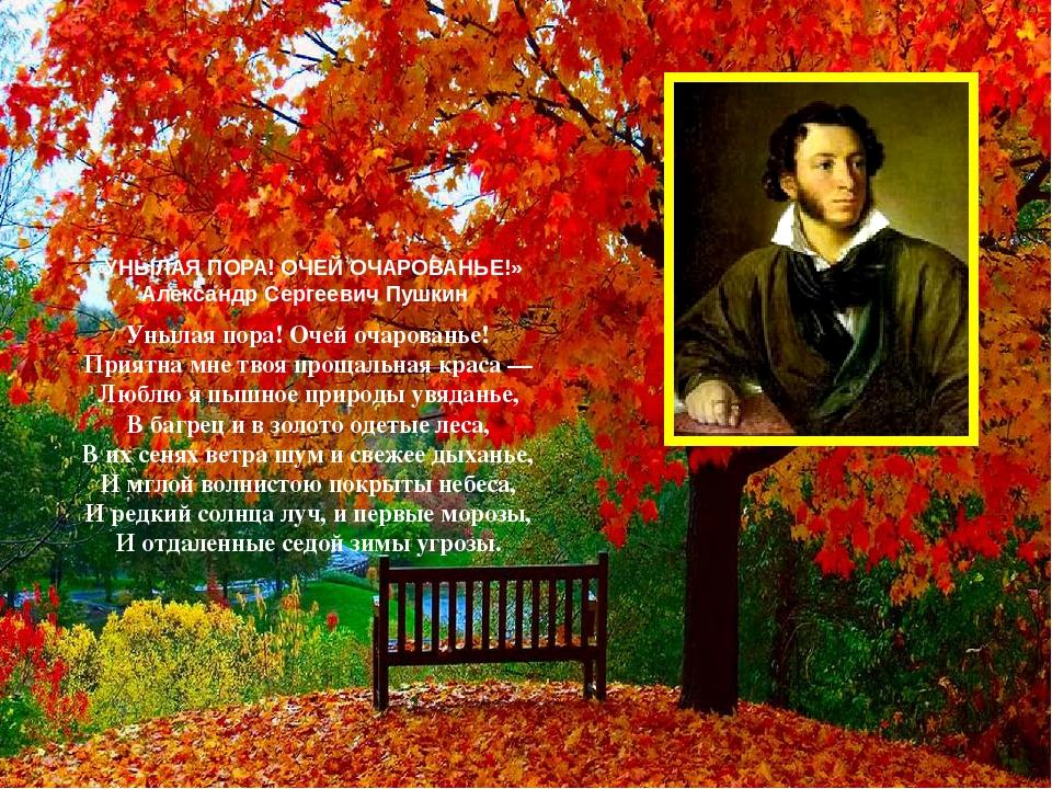 Унылая пора пушкин картинки