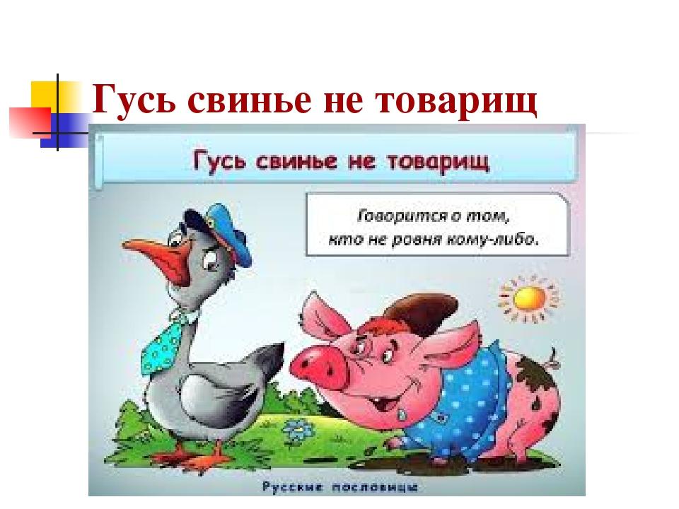 крыши дома картинки на тему гусь свинье не товарищ необходимо