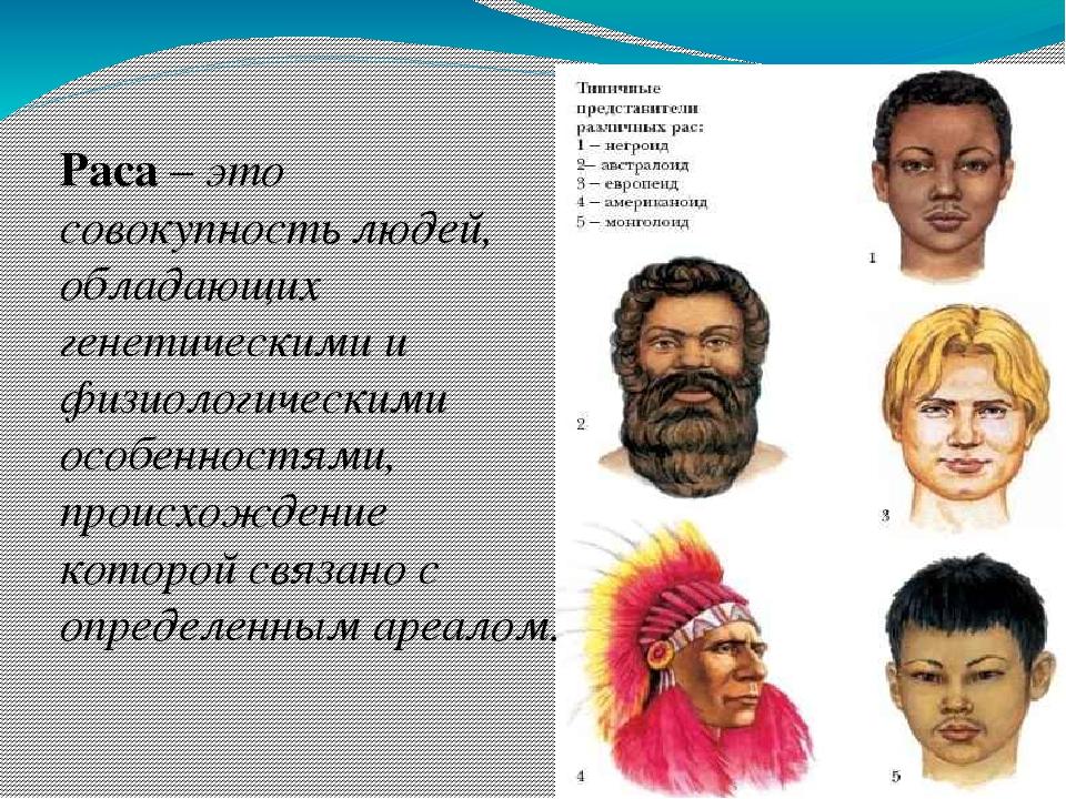 варианты расы и национальности в картинках сборные букеты входят
