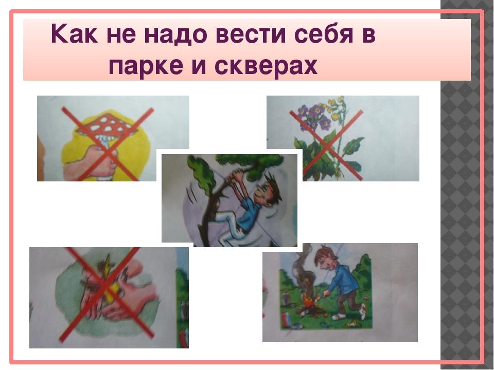 Картинки правила в парке