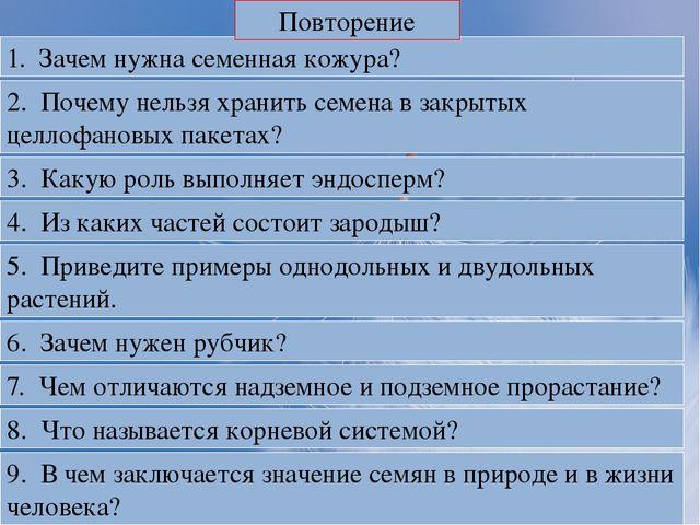 Эндосперма биология 5 класс
