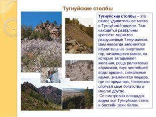 Тугнуйские столбы Тугнуйские столбы – это самое удивительное место в Тугнуйск