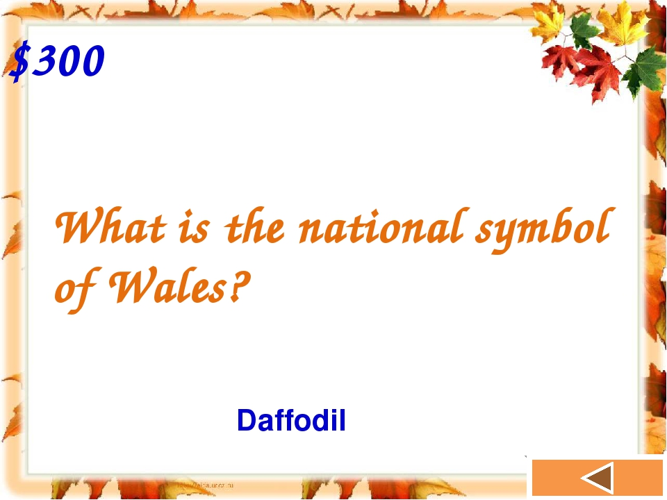 What is the national symbol of Wales? $300 Daffodil