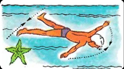 Картинка упражнение медуза