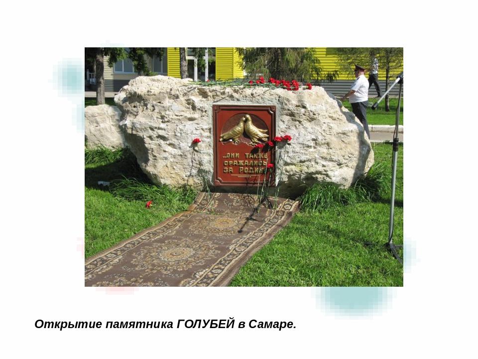 Открытие памятника ГОЛУБЕЙ в Самаре.
