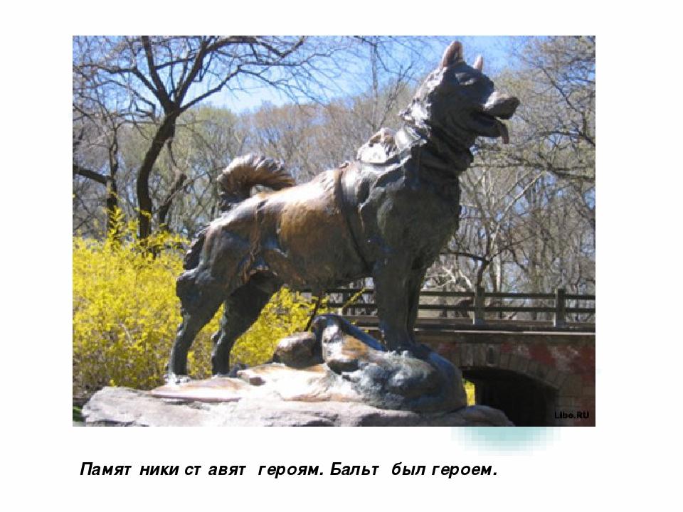 Памятники ставят героям. Бальт был героем.