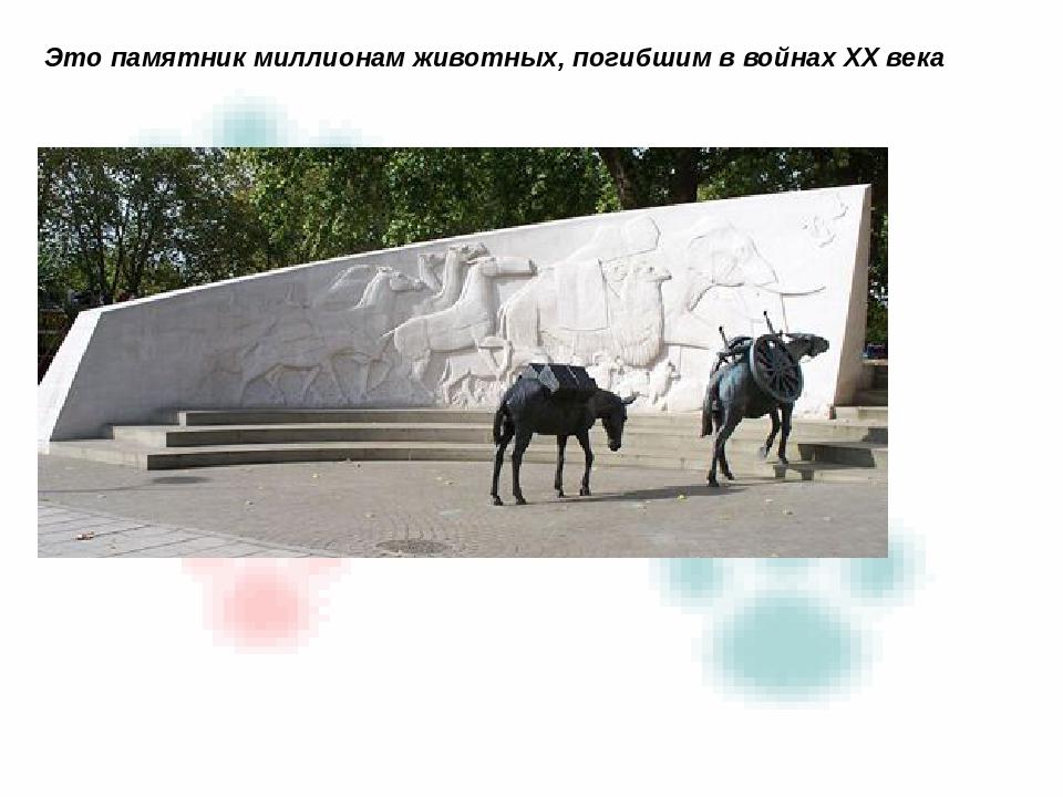 Это памятник миллионам животных, погибшим в войнах XX века